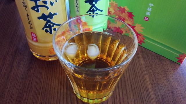 お~いお茶緑茶 (10).jpg